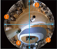 360°全方位(魚眼)映像